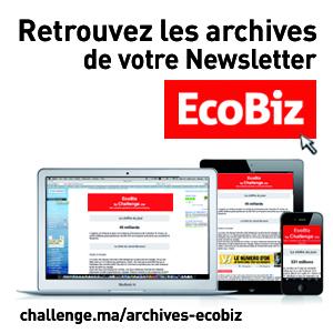 ecobiz challenge