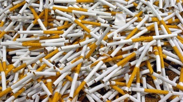 PC_140212_zf4d9_cigarette-illegale-manitoba_sn635