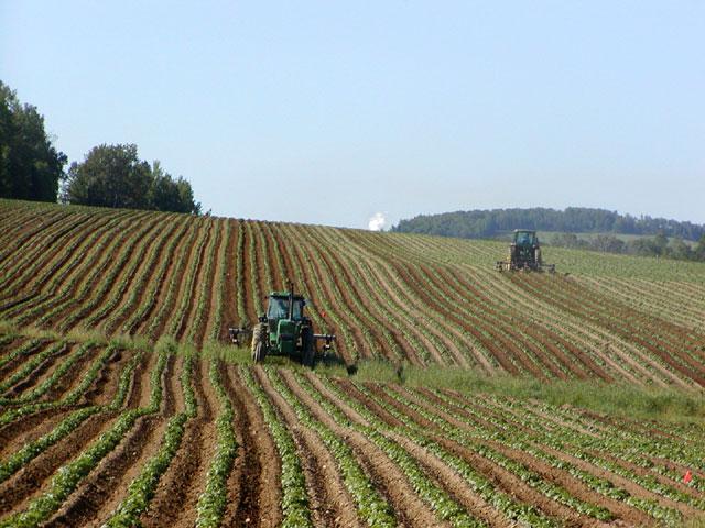 WEB - Registre National Agricole