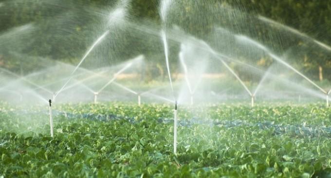 Système d'irrigation Au Caameroun
