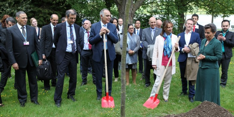 Plantation d'un arbre en commémoration de la signature de l'Accord de Parisde la signature de l'Accord de Paris