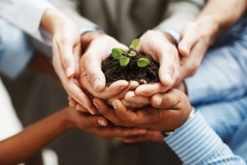 takaful-hands-holding-seedling425
