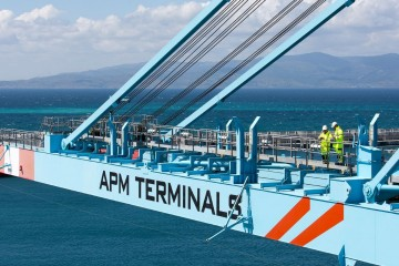 Ces plus grands portiques du monde entier sont conçus pour traiter les nouveaux porte-conteneurs, dont les capacités vont jusqu'à 22.000 EVP.