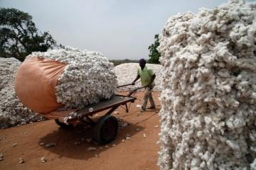 Ce prêt vise à outenir le financement des PME dans dix pays africains.   ©Reuters